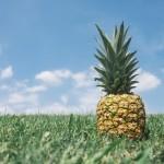 Jak vypěstovat ananas doma