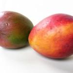 Mango: pěstování z pecky