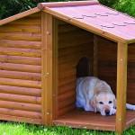 Zateplení psí boudy